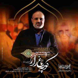 دانلود اجرای زنده آهنگ محمد اصفهانی کوچه باغ راز