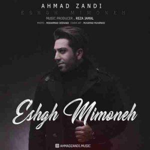 دانلود آهنگ جدید احمد زندی عشق میمونه