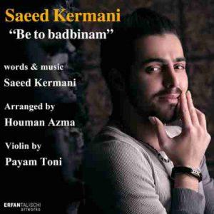 دانلود آهنگسعید کرمانی به تو بدبینم