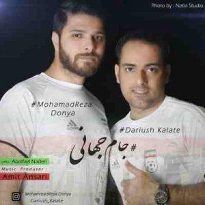 دانلود آهنگ جدید محمدرضا دنیا و داریوش کلاته جام جهانی