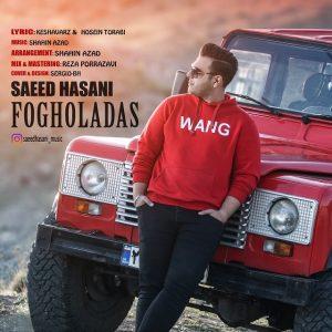 دانلود آهنگ جدید سعید حسنی فوق العادس