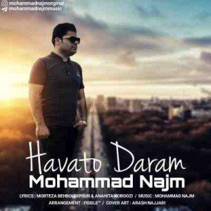 دانلود آهنگ جدید محمد نجم هواتو دارم