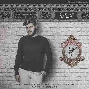 دانلود آهنگ محمد حسین طیبی نیامعجزه