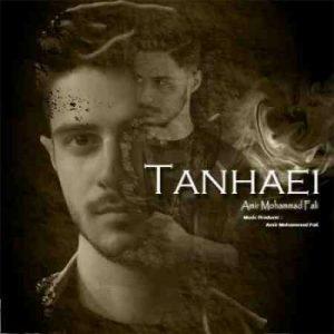 دانلود آهنگ جدید امیرمحمد فالی تنهایی