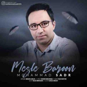 دانلود آهنگ جدید محمد صدر مثل بارون