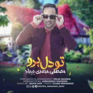 دانلود آهنگ جدید مصطفی محمدی بیداد تو دل برو