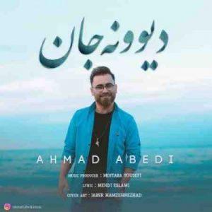 دانلود آهنگ جدید احمد عابدی دیوونه جان
