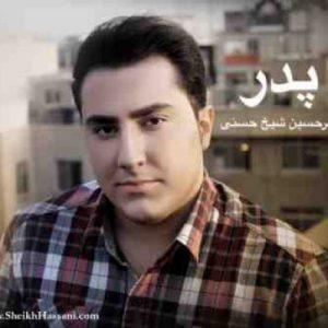 دانلود آهنگ جدید امیر حسین شیخ حسنی پدر