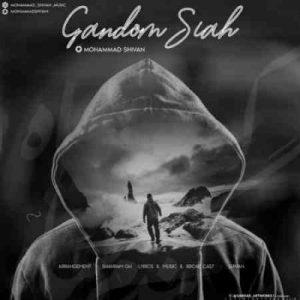 Mohammad Shivan Gandom Siah 300x300 دانلود آهنگ جدید محمد شیون گندم سیاه
