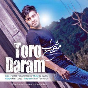 دانلود آهنگ جدید محسن شهاب تورو دارم