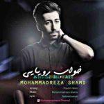 دانلود آهنگ جدید محمدرضا شمس خواب رویایی
