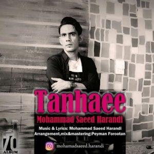 دانلود آهنگ جدید محمدسعید هرندی تنهایی