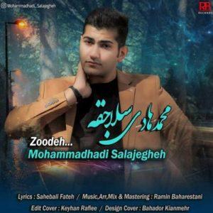 دانلود آهنگ جدید محمد هادی سلاجقه زوده