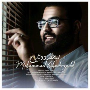 دانلود آهنگ جدید محمد قدیرزاده لبخند دوتایی