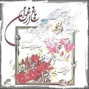 دانلود آهنگ حسام الدین سراج قطعه دوم