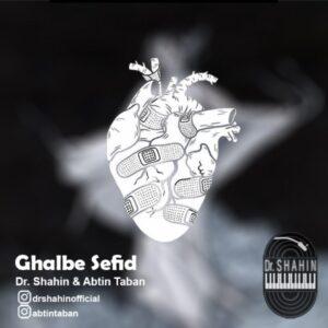 دانلود آهنگ جدید آبتین تابان و دکتر شاهین قلب سفید